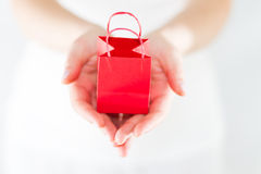 Hands Offering miniature shopping bags Royalty Free Stock Photography