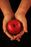 Hands offering red apple Royalty Free Stock Photos