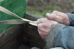 Hands of old man holding reins. On his horsecart Royalty Free Stock Photography