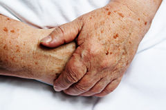 Hands of old person. 2 hands of an old person on the white background royalty free stock images