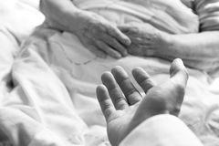 Hands of an old person. In bed Stock Photos