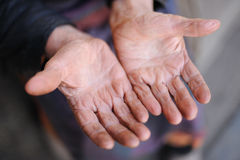 Hands of the old woman. 85 years age. 70 years works in collective farm. Russia Stock Photography