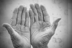 Hands of the old woman. Black and White.  Royalty Free Stock Photography
