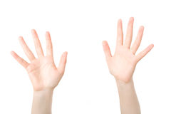 Hands open in prayer Royalty Free Stock Photo