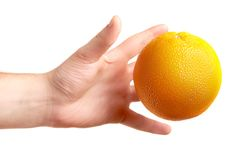Hands with the orange isolated on white Royalty Free Stock Photo
