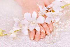 Hands and orchid. Hands with maniqure and white orchid Royalty Free Stock Image