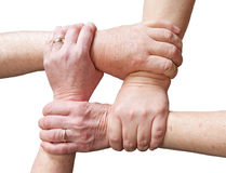 Hands over white. Hands of older people gripping the hands of other older people forming a rectangle in a sign of union, unity or helping each other Royalty Free Stock Photo