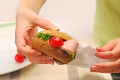 Hands pack up sandwich Stock Image