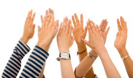 Hands of participation Royalty Free Stock Image