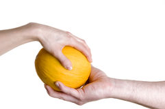 Hands passing mellon. Man and women passing ripe melon fruit, stylized on michelangelo's creation mural Royalty Free Stock Image