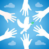 Hands of peace Royalty Free Stock Photography