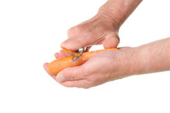 Hands peeling carrot Stock Image