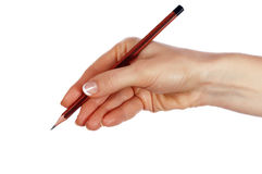 Hands with pencil Stock Photography
