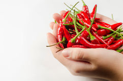 Hands with peppers Royalty Free Stock Photography