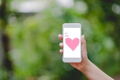 Hands and phones Pink heart screen Green nature Technology Concepts And to do business online. stock photography
