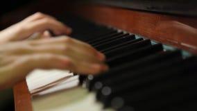 Hands Pianist Stock Photo