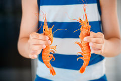 Hands picked shrimps Stock Photo