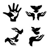 Hands with pigeon icons set vector illustration