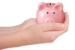 Hands with piggy bank. Stock Photo