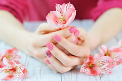 Hands with pink color nails manicure. Woman hands with pink manicure on finger nails holding delicate flowers royalty free stock photography
