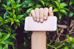 Hands with Pink Nails Hold Pink Phone stock photos
