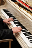 Hands play piano. Man's hands playing piano Royalty Free Stock Photo