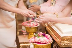 Hands pouring blessing water into bride's bands, Thai wedding Royalty Free Stock Photos