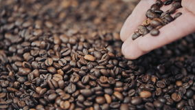 Hands pouring coffee in slow motion stock video