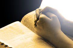 Hands Praying on Bible. Hands of a person raised together in prayer with bible stock image