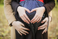 Hands of a pregnant woman Royalty Free Stock Image