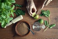 Hands preparing mojito cocktail Stock Photos