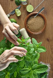 Hands preparing mojito cocktail Royalty Free Stock Image
