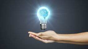 Hands presenting light bulb with brain stock footage