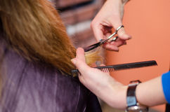 Hands of professional hair stylist cut blonde hair Royalty Free Stock Photos
