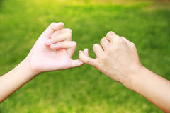 Hands promises together of Mom and her daughter Royalty Free Stock Photos