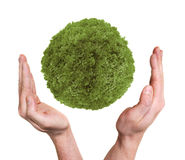 Hands protecting green planet Royalty Free Stock Photography