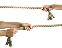 Hands pull a rope. Isolated white background Stock Photography