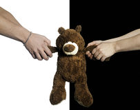 Hands pulling a teddy bear. Against black and white background.2013-1-11 Royalty Free Stock Image