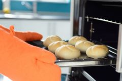 Hands putting in the oven bread rolls Royalty Free Stock Image