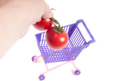 Hands putting tomatoes into shopping-cart Royalty Free Stock Image