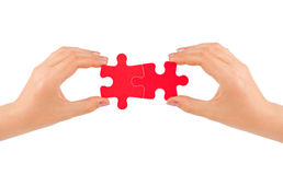 Hands and puzzle Stock Images