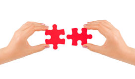 Hands and puzzle. Isolated on white background royalty free stock image