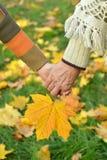 hands rörelsefolk Royaltyfri Bild