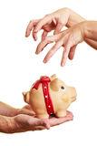 Hands reaching for piggy bank Royalty Free Stock Image