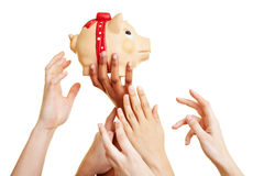 Hands reaching for piggy bank. Many desperate hands reaching for a piggy bank royalty free stock image
