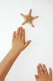 Hands reaching star Stock Image