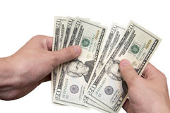 Hands recalculate U.S. dollars Royalty Free Stock Image
