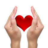 Hands and Red Heart. Hands with red heart on white background stock images