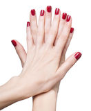 Hands with red manicure Stock Photography