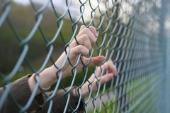 Hands of a refugee woman on a wire fence. A girl imprisoned and deprived of freedom Stock Images
